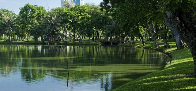 8 Best Outdoor Things to Do In Bangkok