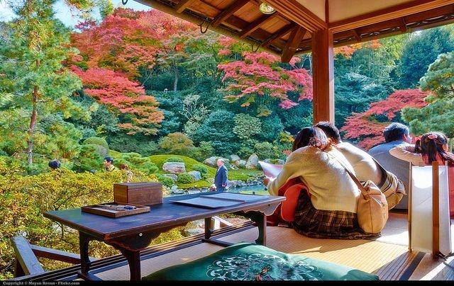 Travel to Kyoto Japan