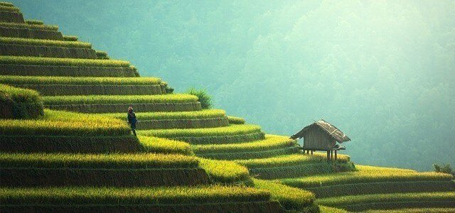 8 Great Places to Go Trekking in Vietnam