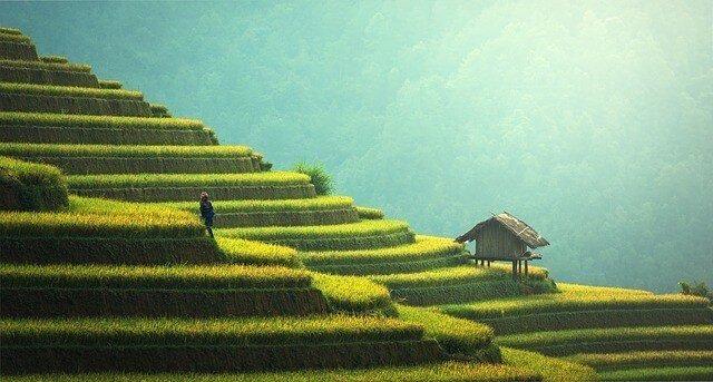 8 Great Places to Go Trekking in Vietnam