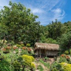 Chiang Mai trek