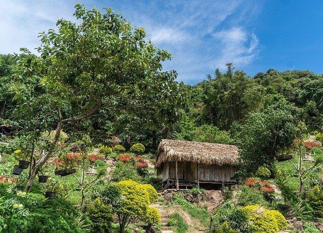 How to Go Trekking in Thailand